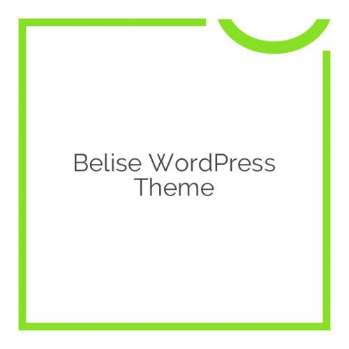 Belise WordPress Theme 1.0.9