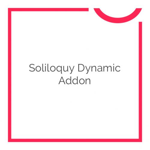 Soliloquy Dynamic Addon 2.3.2