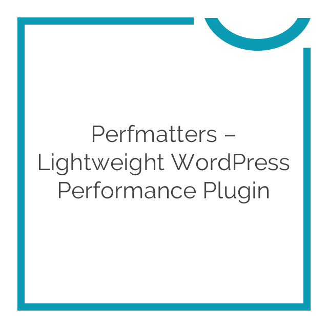 Perfmatters – Lightweight WordPress Performance Plugin 1.3.7