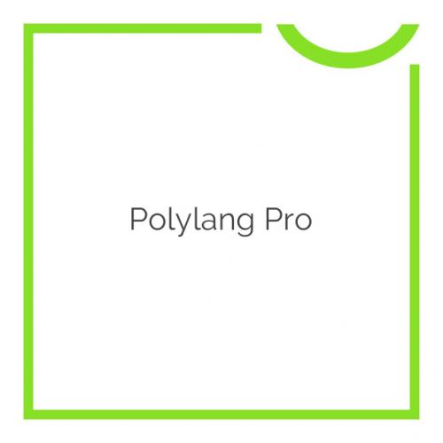 Polylang Pro 2.6.2